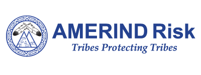 AMERIND Risk has a position opening for Director of Finance.